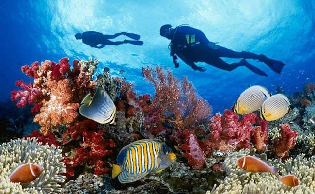 4 Wonderful Sites In Asia For Scuba Diving